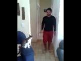 Bro Cat