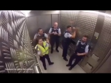 Полицейские биты