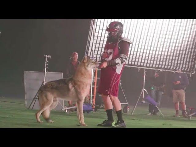 Teen Wolf 6x11 lacrosse wolf behind the scenes
