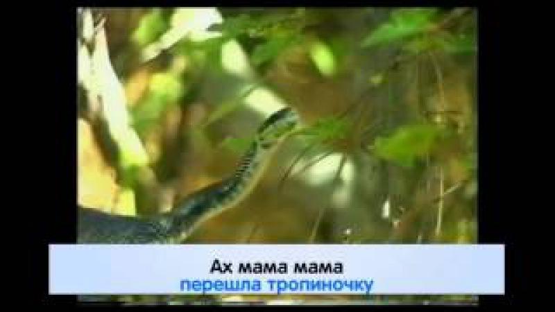 Караоке Народные Ах Мамочка