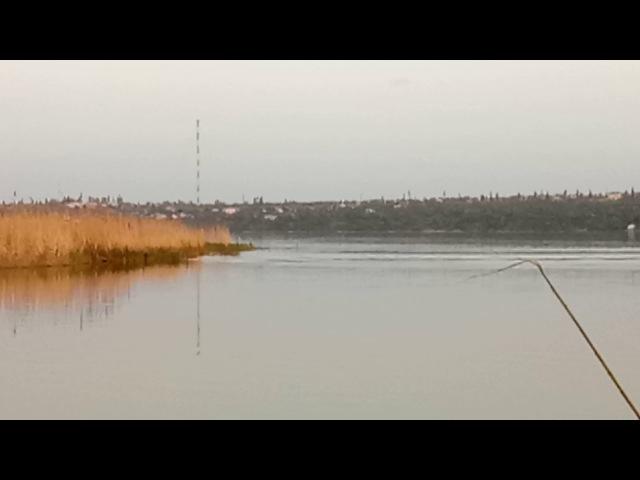 2.05.2017. Річка Південний Буг, Матвіївка, промисловики ставлять сітку під час нерес ...
