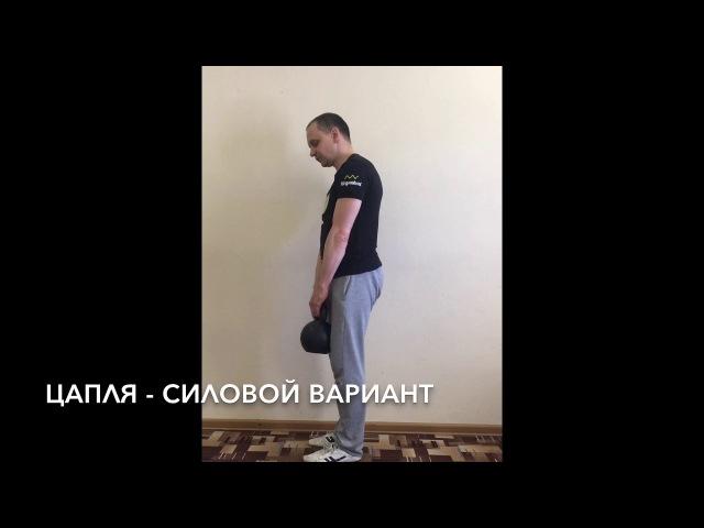 Упражнение ЦАПЛЯ - автор - Симбирев ПС