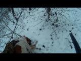 16.11.16 вальдшнеп первый снег с ЭБ Джекки