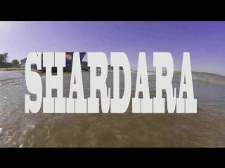 Shardara 2017