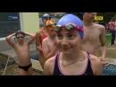 Понад 600 юних спортсменів з'їхалися до Львова на Всеукраїнські змагання з плавання