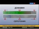 эффект бабочки.спираль зависимости— Яндекс- Нашлась 371тыс.ответов_2
