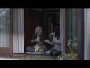 В рекламе собачьего корма старого кота сравнили с дедушкой