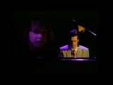 Nick Cave &