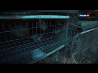 Турецкий транзит 3 серия (2014) Детектив
