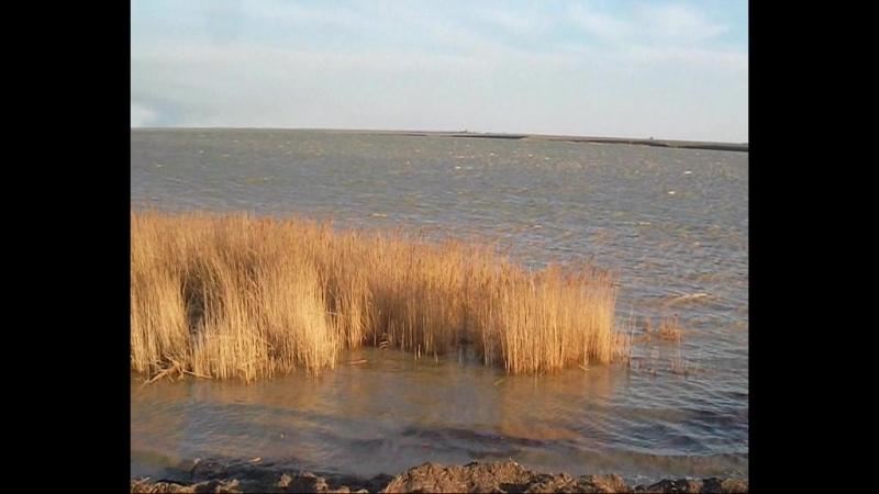Калмыкия, Приютное, Озеро Маныч, Автор Людмила Михайлова