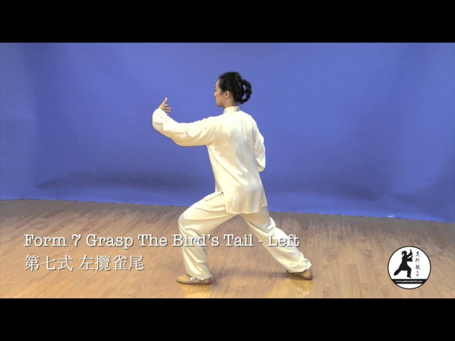 24 Form Tai Chi Demonstration Back View Master Amin Wu 吳阿敏背向示範楊式24式太極拳
