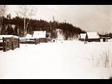 В Сибири фотоловушки периодически фиксируют мамонтов выпавших из временных пор...