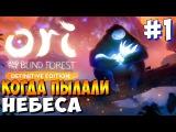 ◄ Ori and the Blind Forest Definitive Edition ► Прохождение ► КОГДА ПЫЛАЛИ НЕБЕСА - 1
