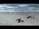 Костя за любимым занятием, пляж в Зеленоградске