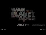 Тизер нового трейлера фильма «Война планеты обезьян»