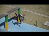 Военное пятиборье по-бразильски - Brazilian military pentathlon