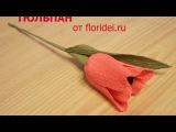 Тюльпан из конфет. Видео мастер-класс
