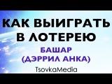 Как выиграть в лотерею ~ Башар (Дэррил Анка) Озвучка + Титры TsovkaMedia