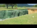 Lioness Attempts to Jump Across Moat to Eat Tourist for Lunch