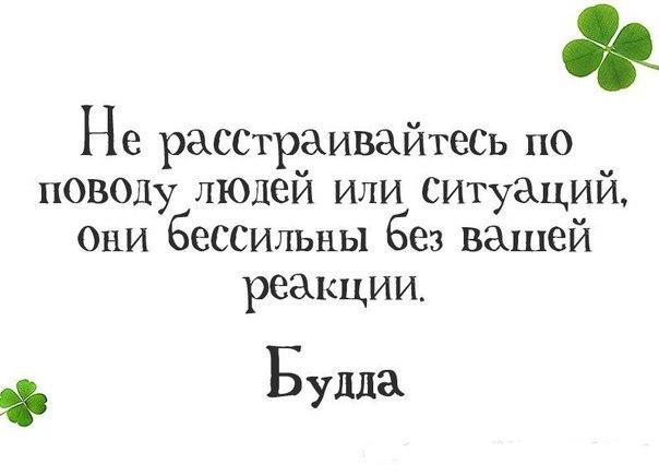 Фото №456248236 со страницы Юли Варламовой