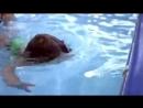 Младенцы бесстрашно плавают, ныряют и чувствуют себя как рыба в воде.