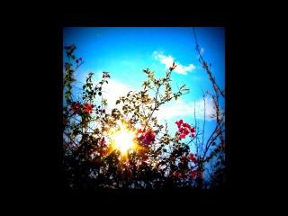DJ Cam Quartet - Everybody Loves the Sunshine (feat. Inlove)