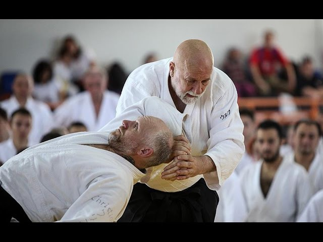Ulf Evenas Shihan Aikido Interview at the IAF Meeting in Romania