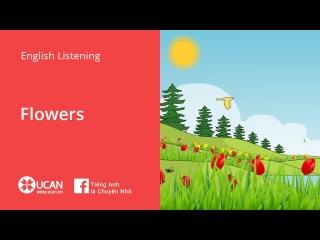 Learn English Listening | Beginner - Lesson 31. Flowers