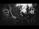 Acherontas Amarta (Formulas of Reptilian Unification II) Second Track Premiere