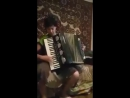 Нина Франция. Урок игры на аккордеоне № 100