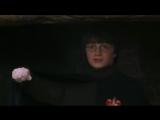 Альтернативная концовка Гарри Поттера