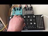 MOOG MOTHER 32 + STRYMON BLUESKY
