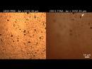 Сравнение голографического микроскопа слева и сканирующего оптического микро...