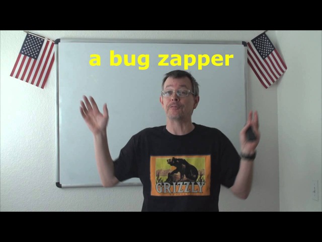 Learn English: Daily Easy English Expression 0689: a bug zapper