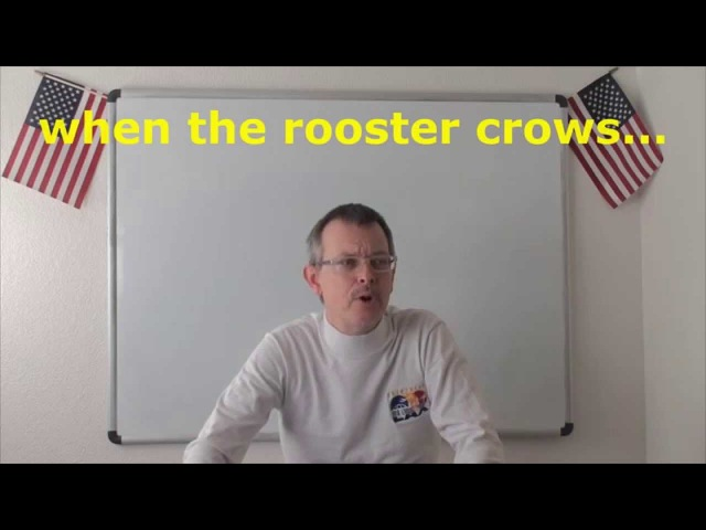 Learn English Daily Easy English Expression 0685 when the rooster crows