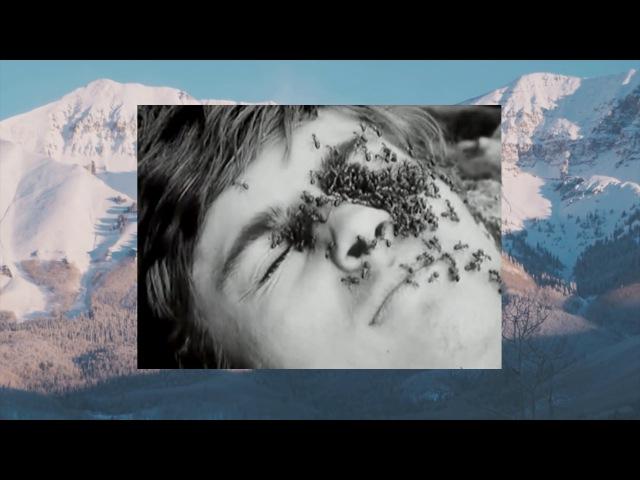 Александр Залупин «Спуск с горы» (2017)
