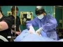 Канал TLC Доктор Ди: ветеринар Аляски