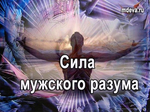 Сила мужского разума