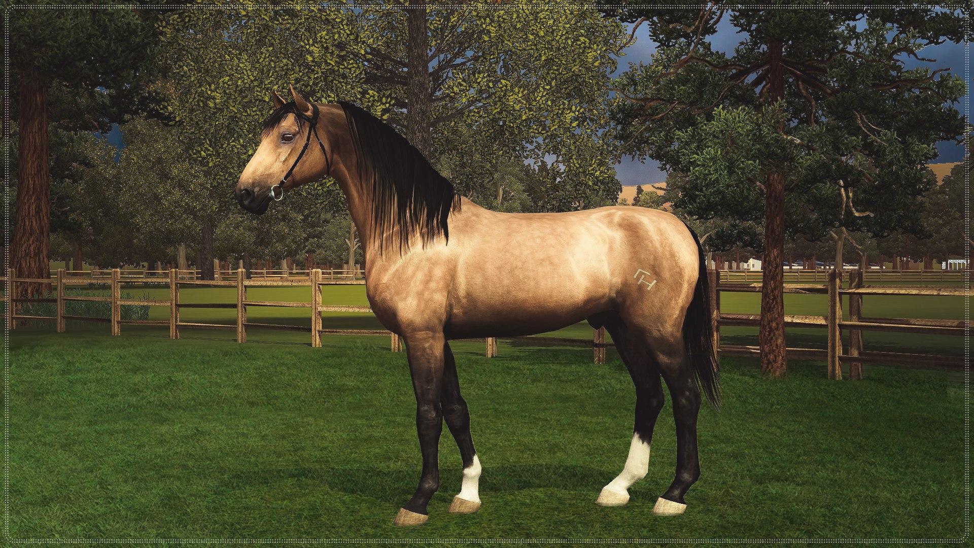 Регистрация лошадей в RHF 2 - Страница 5 _RzWcMVDu7g
