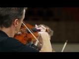 Йозеф Гайдн - струнный квартет op. 20 (№3, 3. Poco adagio)