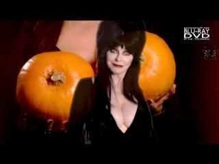 Эльвира — повелительница тьмы ↑ 2 Big Pumpkins