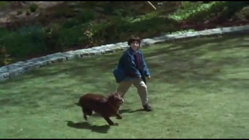 Fluke (1995) Official Trailer