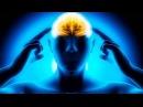Память хранится за пределами человеческого тела. Загадки и тайны человеческого ...