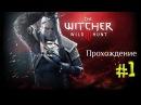 Ведьмак 3 Дикая Охота ▶ Прохождение часть 1 The Witcher 3 Wild Hunt