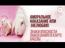 Наказание нелюбви или аморальное наказание в астрологии Бацзы Кролика и Крысы Наталья Пугачева