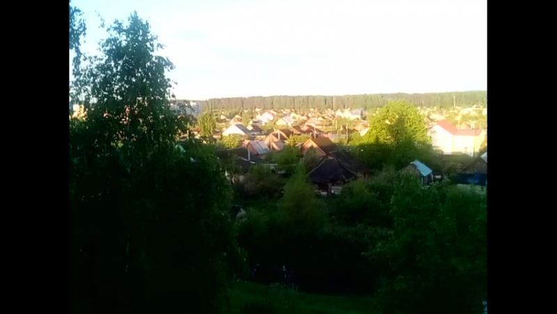 Утро в Заволжье с трелью соловья