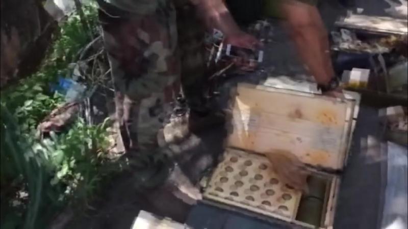 СБУ викрила схованку з значною кількістю зброї в районі АТО