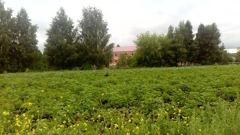 Блохино(лагерь)