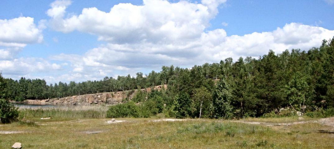 Лесоводы