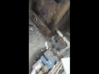 Кішкентайғана сымсыз телефонның батарейкасының қалай жарылатынын мына видеода көрсетілген